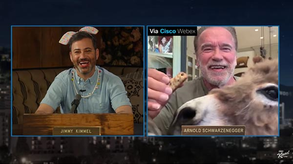 Arnold Schwarzenegger Chats With Jimmy Kimmel About The Pandemic, Uniting Democrats & Republicans, And His Pets Whiskey And Lulu